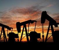 La CNMC, el Ministerio y la UE deben actuar frente al 'vergonzoso comportamiento' de petroleras