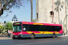 Los autobuses de Sevilla vuelven a la frecuencia previa al Covid-19