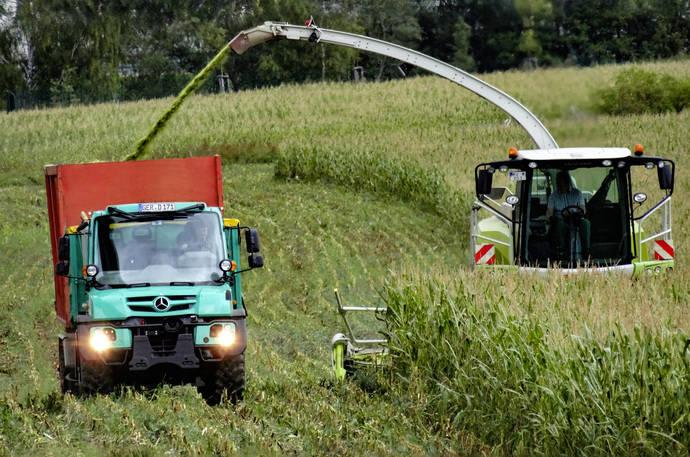 El Unimog en operaciones agrícolas