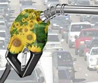 Appa lamenta que el objetivo de biocarburantes en España para 2014 sea uno de los más bajos de toda la UE