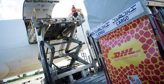 DHL ha trasladado una jirafa a su nuevo hogar en Israel, a través de su red internacional de carga