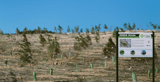 'Un Scania, Un árbol' reconocido como buena práctica empresarial por el Observatorio de Gestión Empresarial de la Biodiversidad